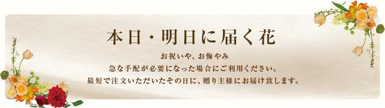 本日・明日に届く花